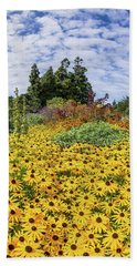 Rudbeckia Vista Beach Sheet