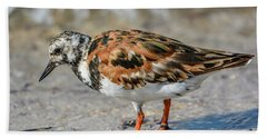 Ruddy Turnstone Beach Towel