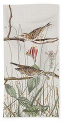 Savannah Finch Beach Towel by John James Audubon