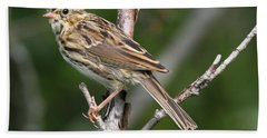 Savannah Sparrow Beach Towel