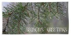Season's Greetings Beach Sheet