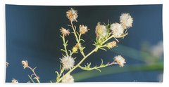 Seed Pod Beach Towel by Donna Brown