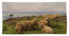 Sheep By The Sea Beach Towel