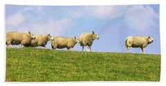 Beach Towel featuring the photograph Sheep On Dyke by Patricia Hofmeester