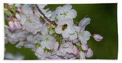 Silicon Valley Cherry Blossoms Beach Sheet by Glenn Franco Simmons