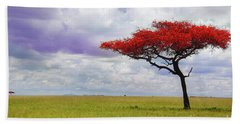 Single Tree Beach Sheet by Charuhas Images