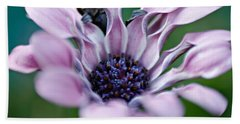 Beach Towel featuring the photograph Soft Purple by Michaela Preston