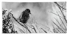 Snarky Sparrow, Black And White Beach Towel