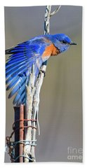 Spread The Wings Beach Towel by Mike Dawson