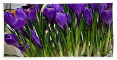 Spring Crocuses Beach Towel by AmaS Art