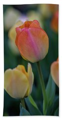 Spring Tulip Beach Towel