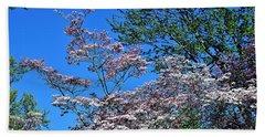 Springtime In Louisville Beach Sheet