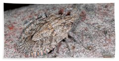 Beach Towel featuring the photograph Stink Bug by Breck Bartholomew
