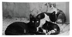 Beach Towel featuring the photograph Street Cats - Portugal by Barry O Carroll