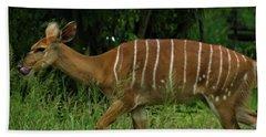 Striped Gazelle Beach Towel