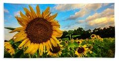 Beach Sheet featuring the photograph Summer Suns  by John Harding