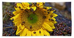 Sunflower Covered In Ladybugs Beach Towel