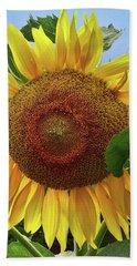 Sunflower Beach Sheet by Mikki Cucuzzo