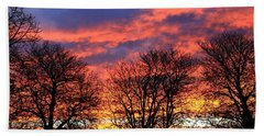 Beach Towel featuring the photograph Sunset And Filigree by Nareeta Martin
