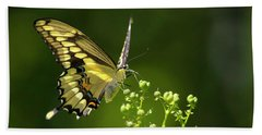 Beach Towel featuring the photograph Elegant Swallowtail Butterfly by Christina Rollo