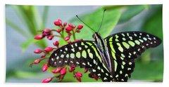 Beach Towel featuring the photograph Tailed Green Jay Butterfly  by Saija Lehtonen