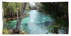 View From Spring 3 To Spring 2 At Three Sisters Springs Beach Towel
