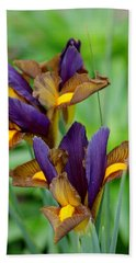 Tiger Irises Beach Towel