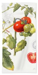 Tomatoes Beach Towel by Margaret Ann Eden