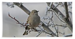 Townsend's Solitaire Beach Towel