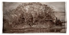 Tree In Marsh Beach Sheet