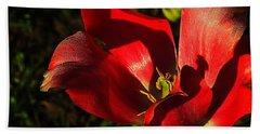 Tulips 2 Beach Sheet by Steve Warnstaff