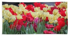 Tulips Beach Sheet by Suhas Tavkar