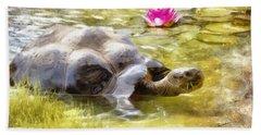 Turtle Takes A Swim Beach Sheet by Ricky Dean