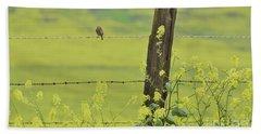 Warbler In The Meadow Beach Towel by Debby Pueschel