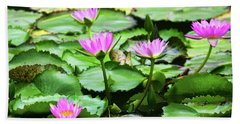 Beach Towel featuring the photograph Water Lilies by Anthony Jones