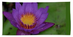 Water Lily Beach Towel by Ronda Ryan