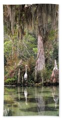 Weeki Wachee River Beach Towel