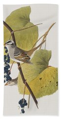 White-crowned Sparrow Beach Towel by John James Audubon
