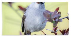 Beach Towel featuring the photograph White-crowned Sparrow  by Ricky L Jones
