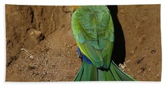 White Fronted Bee-eater Beach Towel