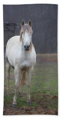 White Horse In Fog Beach Towel