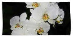 Beach Towel featuring the photograph White Orchid by Elvira Ladocki