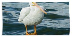 White Pelican Beach Sheet
