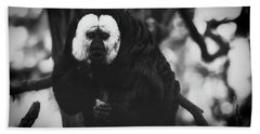 Beach Towel featuring the photograph White Saki by The 3 Cats