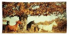 Wild Horses Beach Sheet