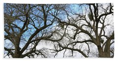 Beach Towel featuring the photograph Winter Trees At Fort Tejon Lebec California  by Floyd Snyder