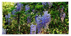 Beach Towel featuring the photograph Wisteria by Betty-Anne McDonald