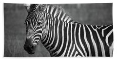 Beach Towel featuring the photograph Zebra by Trace Kittrell