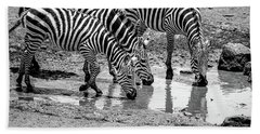 Zebras At The Watering Hole Beach Sheet by Marion McCristall