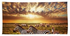 Zebras Herd On African Savanna At Sunset. Beach Towel